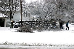 01 December 2006: Homeowners survey the damage and assess the work needed to clear a large portion of a tree that has fallen in their drive as a sharp winter storm swept into Central Illinois and the Bloomington-Normal area causing power outages, road closures, white out conditions, tree damage, and virtually every large business and schools to close.<br />