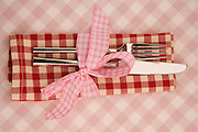 Dow0014121 . Daily Telegraph..Cutlery and napkin detail at Tom and Sophie Conran's summers eve party in west Sussex . Catering was provided by Tom's team from his London restaurants...West sussex 6 June 2009