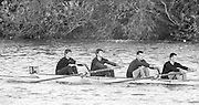 """London, Great Britain.<br /> """"Goldie"""" Cambridge University BC, competing in the  1986 Fours Head of the River Race, Reverse Championship Course Mortlake to Putney. River Thames. Saturday, 15.11.1986<br /> Bow. Stephen PEEL. AN. OTHERS Jim GARMAN and Paddy BROUGHTON.<br /> [Mandatory Credit: Peter SPURRIER;Intersport images] 15.11.1986"""
