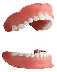 teeth 005 Teeth Dentures