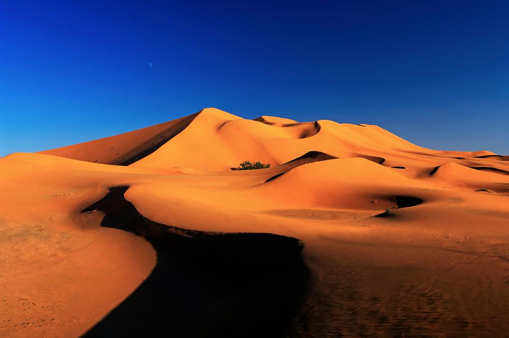 The towering dunes at Merzouga, Sahara Desert