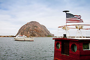 On the water in Morro Bay