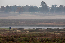 © Licensed to London News Pictures. 23/10/2019. London, UK. Walkers in South West London enjoy the autumnal feel of  Richmond Park in the hazy sun. As weather forecasts predict a wet weekend before the clocks go back on Sunday. Photo credit: Alex Lentati/LNP