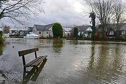 © Licensed to London News Pictures. 03/02/2014. Sunbury, UK. A bench sits in floodwater. Flooding along the banks of the River Thames in Sunbury in Surrey today 3rd February 2014. Photo credit : Stephen Simpson/LNP