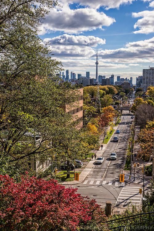 Toronto Skyline from Spadina Park