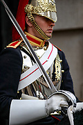 A member of Horse Guards stands tall following shift ceremony inside the Horse Gaurds Parade in central London on Sunday, Aug 8, 2021. (VX Photo/ Vudi Xhymshiti)