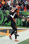 Cincinnati Bengals outside linebacker Vontaze Burfict (55) leaps on the back of Bengals cornerback Dre Kirkpatrick (27) as they celebrate after stopping a fourth down play to win the 2017 NFL week 8 regular season football game against the Indianapolis Colts, Sunday, Oct. 29, 2017 in Cincinnati. The Bengals won the game 24-23. (©Paul Anthony Spinelli)
