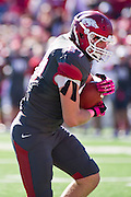 Oct 27, 2012; Little Rock, AR, USA; Arkansas Razorback tight end Austin Tate (87) makes a catch during a game against the Ole Miss Rebels at War Memorial Stadium. Ole Miss defeated Arkansas 30-27. Mandatory Credit: Beth Hall-US PRESSWIRE