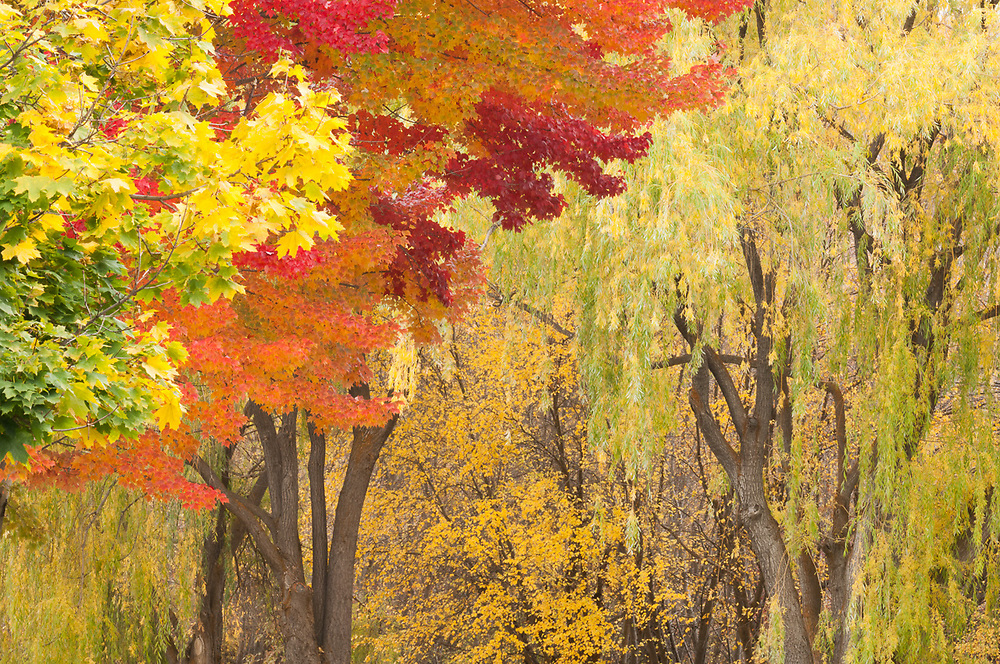 Pearrygin State Park, Washington, USA.