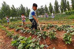 June 16, 2017 - Weifan, China - Young students et a chance to experience farm work at a mini farm in Weifang, east China's Shandong Province. (Credit Image: © SIPA Asia via ZUMA Wire)