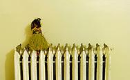 Hula girl doll on a radiator.