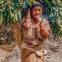 Villagers bring bat leaves from the forest for their animals, a major fuel of Nepal's deforestation.