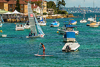 Paddleboarding in the harbor at Manly, Sydney, New South Wales, Australia