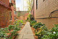 Garden at 36 Sutton Place South