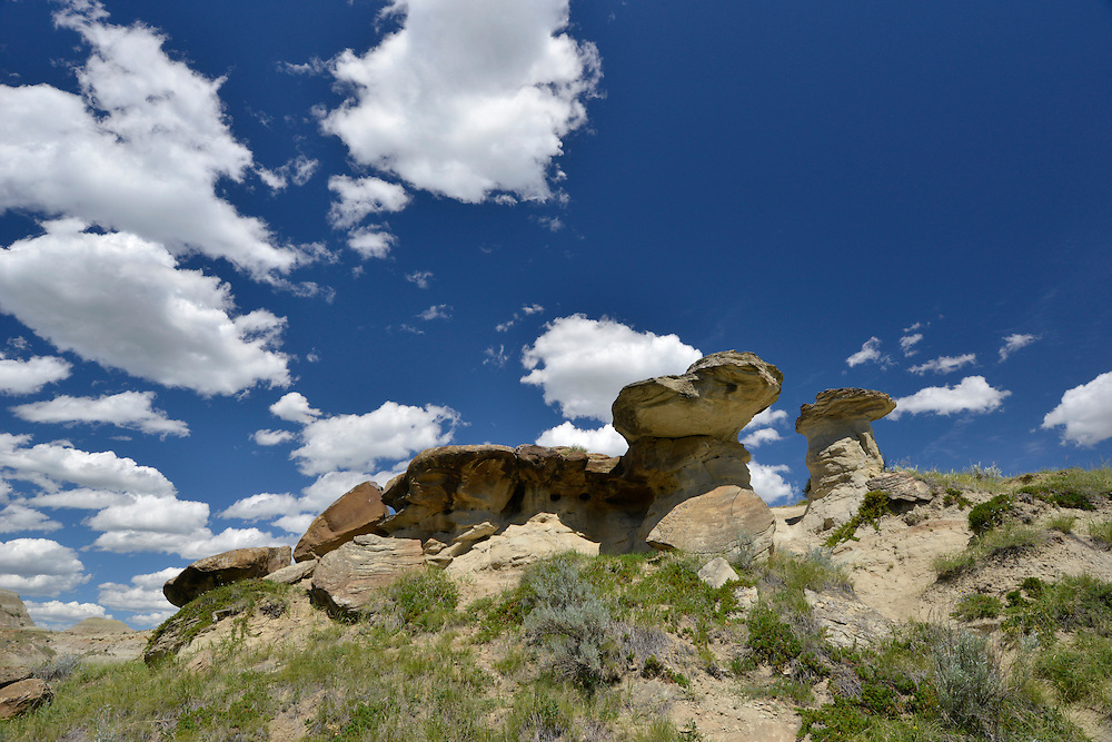 Rock formations known as Hoodoos, The Badlands, Dinosaur Provincial Park, Alberta, Canada
