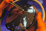 Micro Technology: Micromechanics: A processed silicon wafer containing hundreds of micro mechanic pressure sensors. Tweezers are being used to remove faulty sensors, labeled by an automatic test device with a black dot of ink.