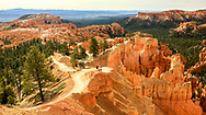 Queens Garden Trail, Bryce Canyon National Park. Photo taken May 14, 2016, while hiking Queens Garden / Navajo Trail Loop.