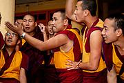 A group of Tibetan monks engage in energetic debate in Dharamsala, Himachal Pradesh, India