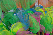A detail of childrens rock multicoloured pool nets, on 14th July 2017, at Flamborough Head, East Riding, England.