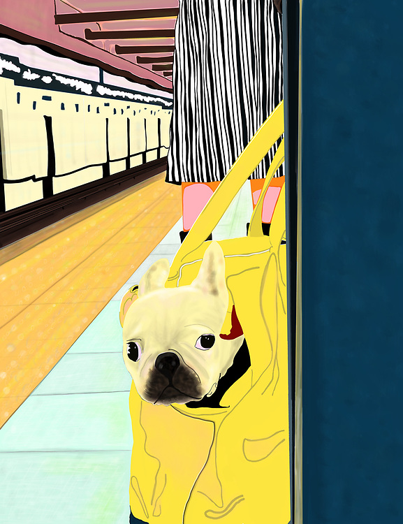 A Woman and her French Bulldog commuting on the F Train in New York City