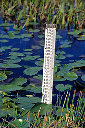 Water Level Measuring Stick