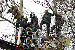 Steeple Claydon, UK. 23 February, 2021. National Eviction Team bailiffs acting for HS2 Ltd use a cherry picker to cut a branch beneath an activist during an operation to evict activists opposed to the HS2 high-speed rail link from ancient woodland known as Poors Piece. The activists created the Poors Piece Conservation Project there in spring 2020 after having been invited to stay on the land by its owner, farmer Clive Higgins. Already, local village communities have been hugely impacted by HS2, with 550 acres of land seized including a large section of a nature reserve.