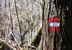 THEMENBILD - eine rot weiß rote Wegmarkierung auf einem Baumstamm, aufgenommen am 07. April 2018, Kaprun, Österreich // a red white red way marker on a tree trunk on 2018/04/07, Kaprun, Austria. EXPA Pictures © 2018, PhotoCredit: EXPA/ Stefanie Oberhauser