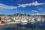 Sailboats in marina<br /> Gibsons<br /> British Columbia<br /> Canada