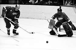 Detroit Redwings Gary Bergman and goaling Joe Daley<br />1971 avtion..(photo by Ron Riesterer)