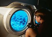 Atlantis Submarine; Hawaii
