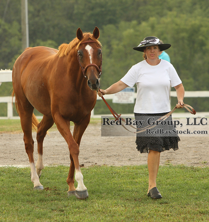 Kim Mancuso and Vacationland at the First Annual Bourbon County Secretariart Festival in Paris, Kentucky