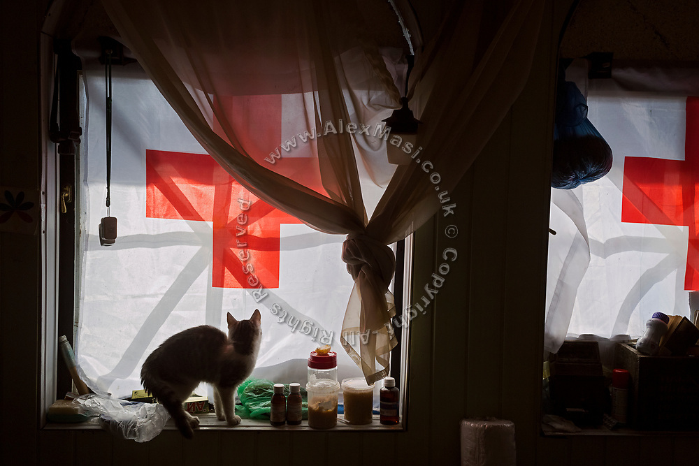 Julia Paevska's cat is playing inside her temporary home at small base near the Bakhmut-Debaltseve highway, in Ukraine's conflict zone.