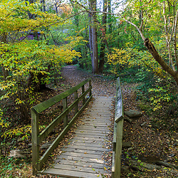 A walking ath with a wood foot bridge in the woods.