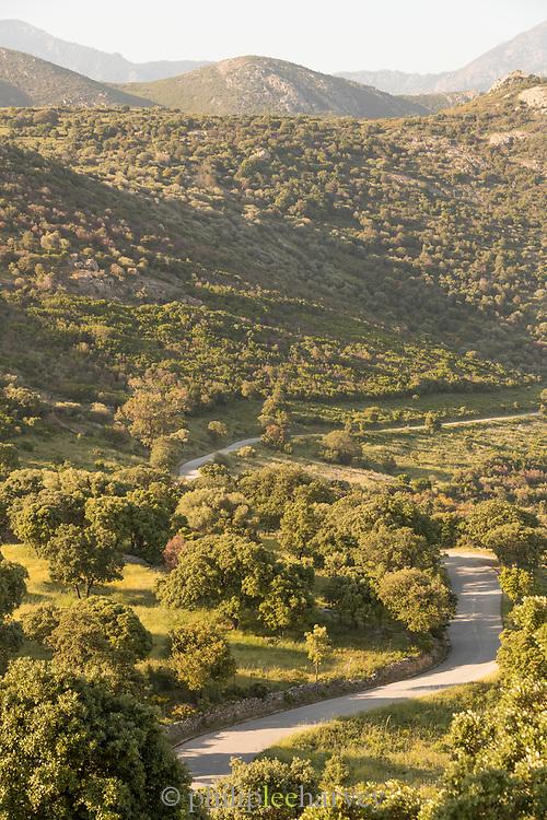 High angle view of road between hills, Route des Vins de Balagne, Corsica. France