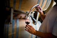 Santiago Santamaria, of Bodega Melipal, decants Malbec wine from oak casks at the winery in the Luján de Cuyo area of Mendoza, Argentina.