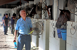 At Gulfstream racetrack, Jerry Bennett gets ready to load up Pinky, a Florida bred filly that has won 7 races in her short career. Bennett had already taken 30 of his horses to Ocala and was loading another 10 for the journey before Hurricane Irma.  (Mike Stocker/Sun Sentinel/TNS/Sipa USA)<br />