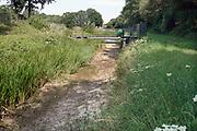 Nederland, the netherlands, Brummen, 10-8-2020De Oekensebeek is drooggevallen vanwege de aanhoudende droogte .  Hier in de Achterhoek op de hoge zandgronden is het watertekort een toenemend probleem. Foto: ANP/ Hollandse Hoogte/ Flip Franssen