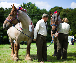 © Licensed to London News Pictures.15/08/15<br /> Rosedale, UK. <br /> <br /> The owners of a pair of heavy horse prepare to enter the arena during competition at the Rosedale Country Show. This mainstay annual event remains as popular as ever attracting visitors and entrants from across the region.<br /> <br /> Photo credit : Ian Forsyth/LNP