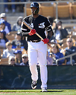 GLENDALE, ARIZONA - FEBRUARY 23:  Eloy Jimenez #74 of the Chicago White Sox looks on during the game against the Los Angeles Dodgers on February 23, 2019 at Camelback Ranch in Glendale Arizona.  (Photo by Ron Vesely)  Subject:  Eloy Jimenez