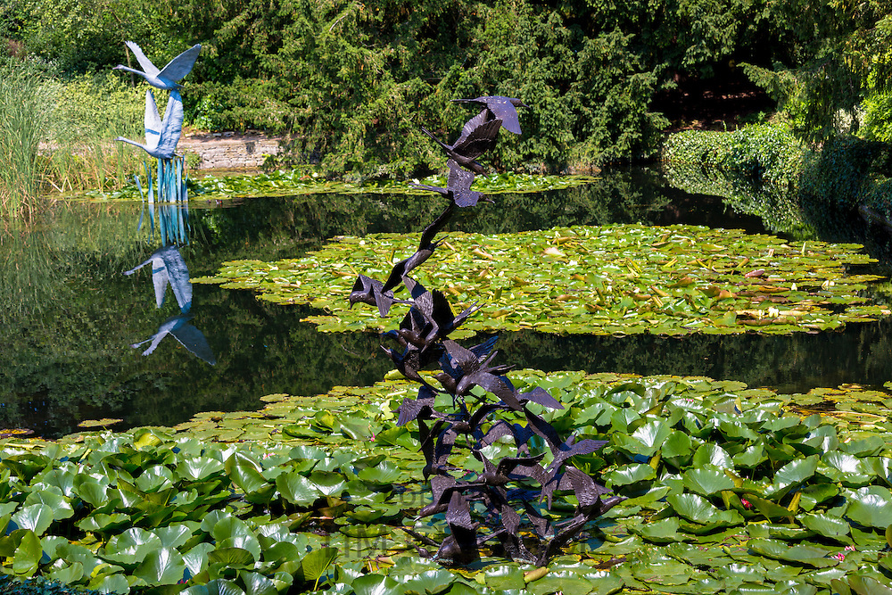 Sculptures of a flock of 29 terns and flying swans in bronze by Lloyd Le Blanc in lake at Le Manoir Aux Quat' Saisons in UK