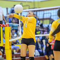 Newcomb Skyhawk Zoey Natonabah (10) volleys while playing the Tohatchi Cougars at Tohatchi High School Thursday.