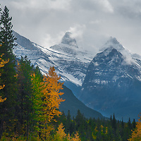 Mount Christie, Brussel's Peak and Mount Lowell tower above fall colors in the Canadian Rockies.