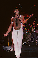 LOS ANGELES, CA - FEBRUARY 25: <br /> Freddie Mercury of Queen in concert at The Forum on February 25, 1977 in Los Angeles, California.
