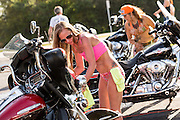 Bikini clad women wash Harley-Davidson motorcycles for a fundraiser during the 74th Annual Daytona Bike Week March 8, 2015 in Daytona Beach, Florida. More than 500,000 bikers and spectators gather for the week long event, the largest motorcycle rally in America.
