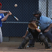 Expressions on the batters face as a young baseball players swings at a pitch during the Norwalk Little League baseball competition at Broad River Fields,  Norwalk, Connecticut. USA. Photo Tim Clayton