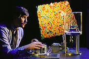 """Ralph Hollis of IBM at Yorktown Heights, N.Y. demonstrates a tele-nanorobotic manipulation system with atomic scale force feedback. A scanning tunneling microscope that is probing the surface of gold is linked to a force-feedback """"magic wrist"""" which moves as the microscope probe maps out the atomic structure, enabling the user to """"feel"""" the atoms. In the background is a color image of the gold's atomic surface structure. The other two researchers who worked on the system are (Tim).S. Salcudean, and David W. Abraham. Model Released"""
