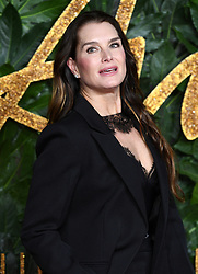Brooke Shields attending the Fashion Awards in association with Swarovski held at the Royal Albert Hall, Kensington Gore, London