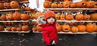 Laconia's Pumpkin Fest.  Karen Bobotas for the Laconia Daily Sun