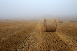 CZECH REPUBLIC VYSOCINA NEDVEZI 17AUG15 - <br /> <br /> Harvested field of wheat and bales of straw in the morning mist near the village of Nedvezi, Vysocina, Czech Republic.<br /> <br /> jre/Photo by Jiri Rezac<br /> <br /> <br /> <br /> © Jiri Rezac 2015