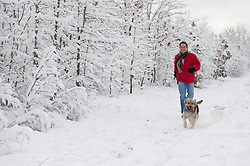 handsome man running in the snow with his Shepard dog in rural South Carolina